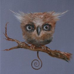 Odd Owl II